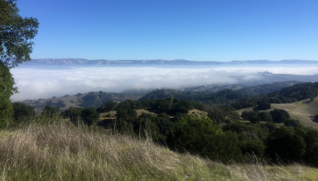 Bald Peak at Calero County Park