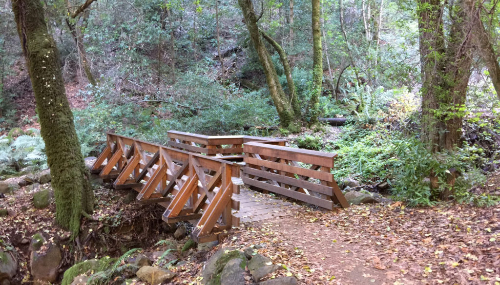 Sanborn Creek Bridge in Sanborn County Park