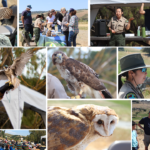 250 flock to first 'raptor encounter'